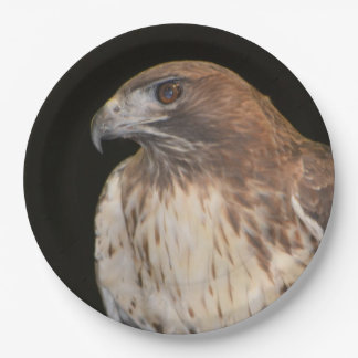 Spirit Of The Hawk Paper Plate