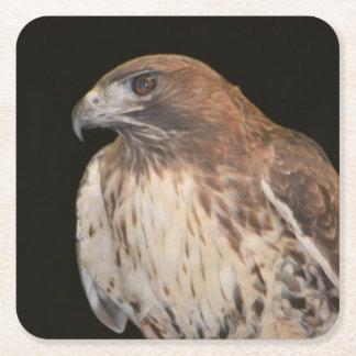 Spirit of the Hawk Square Paper Coaster