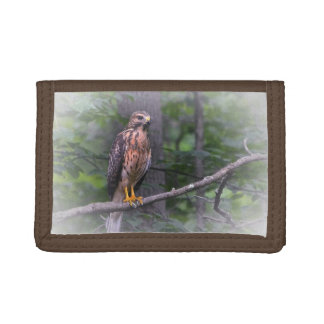 Spirit Of The Hawk Trifold Wallet
