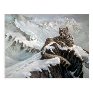 Spirit of the mountains, Snow Leopard Postcard