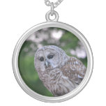 Spirit Of The Owl Silver Plated Necklace