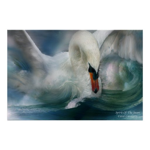 Spirit Of The Swan Art Poster/Print Poster