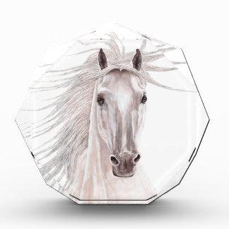 Spirit of the Wind Horse -vintage- Awards