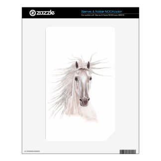 Spirit of the Wind Horse -vintage- NOOK Color Decals