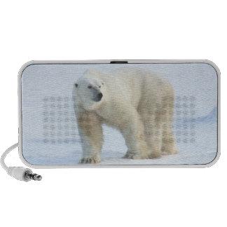 Spirit Passages Polar Bear portable audio speaker