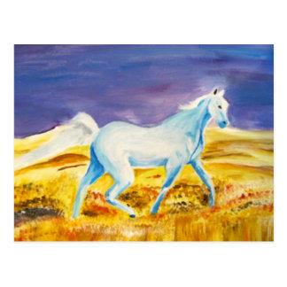Spirit Water Horse-postcard Postcard