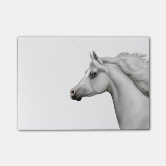 Spirited Gray Arabian Horse Post-it Notes