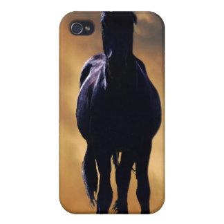 Spirited horse iPhone 4/4S cases