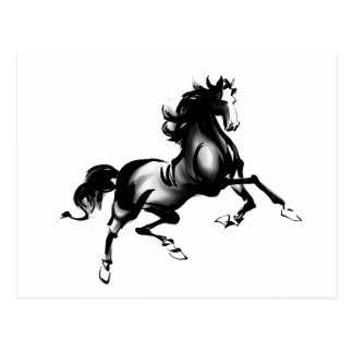 SPIRITED HORSE POSTCARD