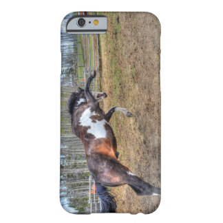 Spirited Pinto Stallion Equine Action Photo Barely There iPhone 6 Case