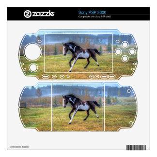 Spirited Pinto Stallion in Misty Field Photo PSP 3000 Skins