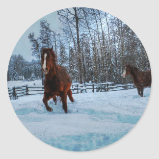 Spirited Sorrel Horse in Snow for Horse-lovers II Classic Round Sticker