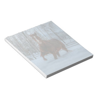 Spirited Sorrel Horse in Snow for Horse-lovers Notepad