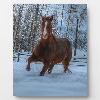 Spirited Sorrel Horse in Snow for Horse-lovers Photo Plaque
