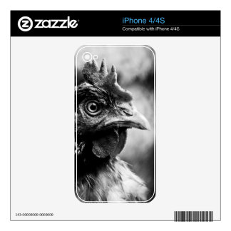 spirits and chickens 2 decals for iPhone 4S