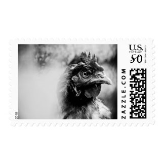 spirits and chickens 2 postage