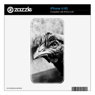 spirits and chickens iPhone 4S decal