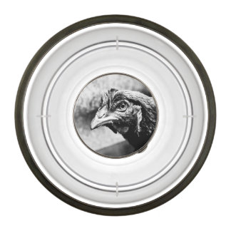 spirits and chickens pet bowl