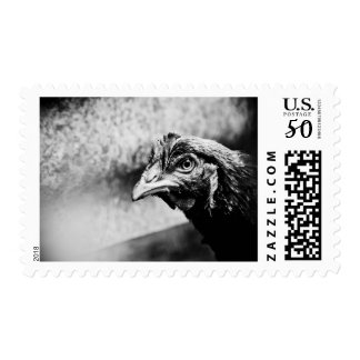spirits and chickens postage