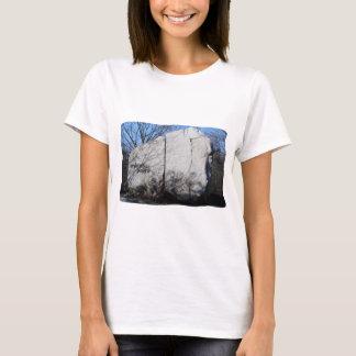spiritual power T-Shirt