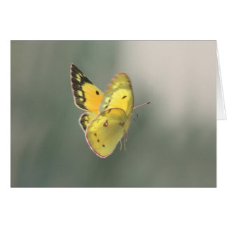 Spiritual Transition Butterfly Sympathy Card