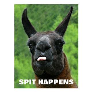 Spit Happens Postcard