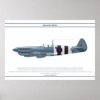 Spitfire GB 16 Sqn 2 Póster