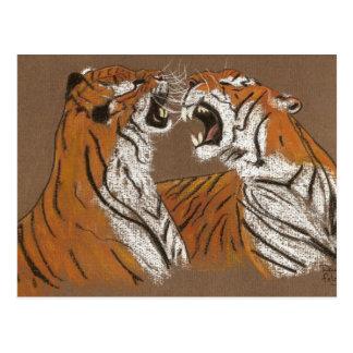 Spitting Mad Tigers - postcard
