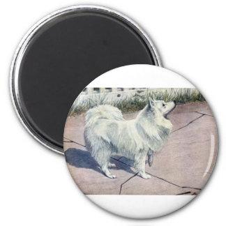 Spitz 2 Inch Round Magnet