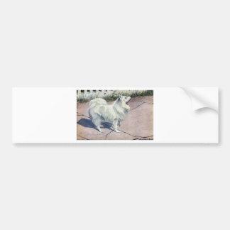 Spitz Bumper Sticker