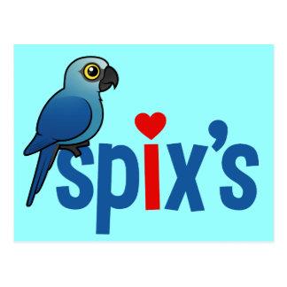 Spix s Love Postcard