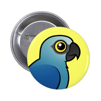 Spix's Macaw Pinback Buttons