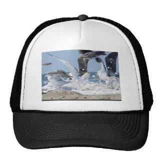 Splash Mesh Hats