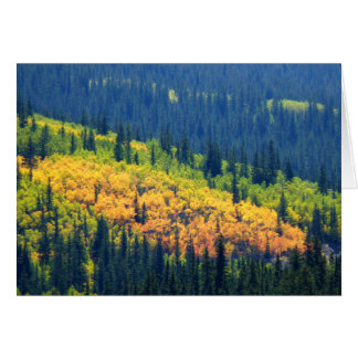 Splash of Fall Color Cards