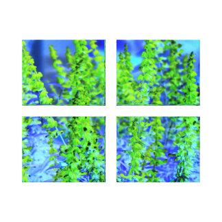 Splash of Lime and Aqua - Flowers Multi Canvas Set