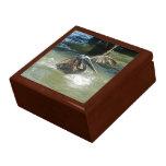 Splashdown Gift Box
