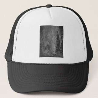 Splashes of fountain water (black and white) trucker hat