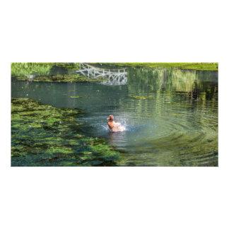 Splashing duck in a pond card