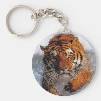 Splashing Majestic Bengal Tiger Swim Toward Prey Key Chain