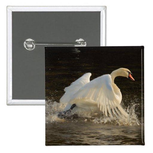 Splashing Swan Button