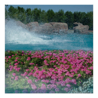 splashing water pond and flowers poster