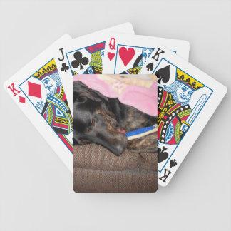 Splash's Nap Time Bicycle Playing Cards