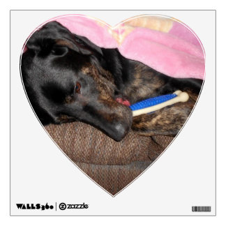 Splash's Nap Time Wall Decal