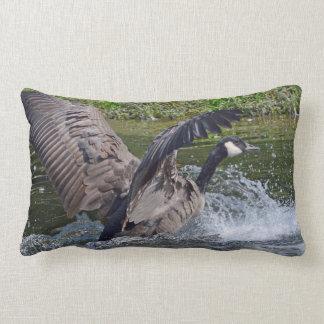 Splashy Landing Canada Goose Lumbar Pillow