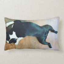 Splat Boston Terrier Lumbar Pillow