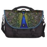 Splendid Peacock Laptop Bags
