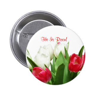 Splendid Red and White Tulips Design Pinback Buttons