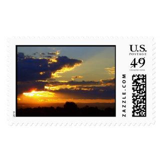 Splendor Postage