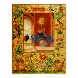 Splendor Solis The Arms of The Art Poster