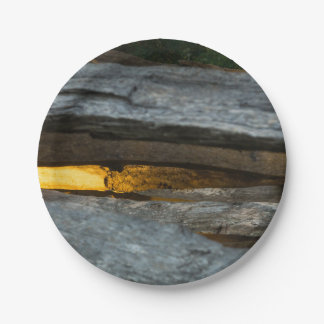 Split Rail Abstract Paper Plate